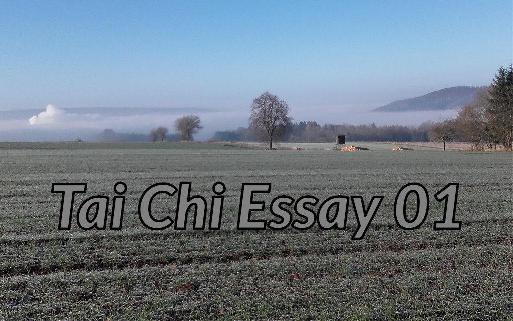 Tai Chi Video Essay 01